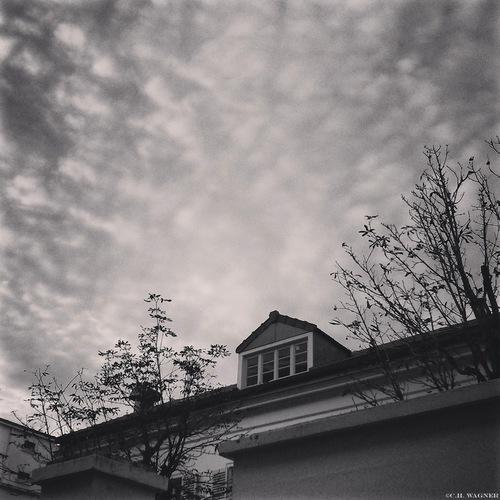 Un_Coin_du_Ciel_de_Paris.jpg