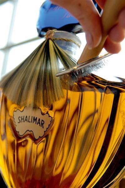 Shalimar-Orphin.jpg