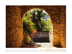 New Scents from L'Occitane {Fragrance News}