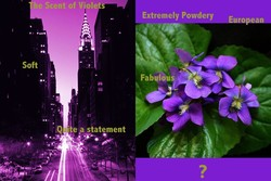 Mystery Violet Perfume in Manhattan...Please Help! {Ask Marie-Helene} {Violet Notebook}