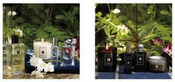 Jo Malone Kohdo Wood Collection is Back {Shopping Tip}