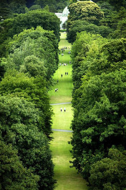 Kew Gardens' 250th Anniversary {Scented Paths & Fragrant Addresses - Green News}