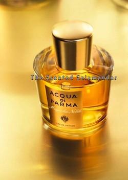 Acqua di Parma Magnolia Nobile (2009) {New Perfume}