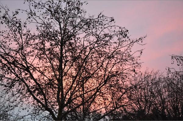 Sky-fall-paris-2.jpg