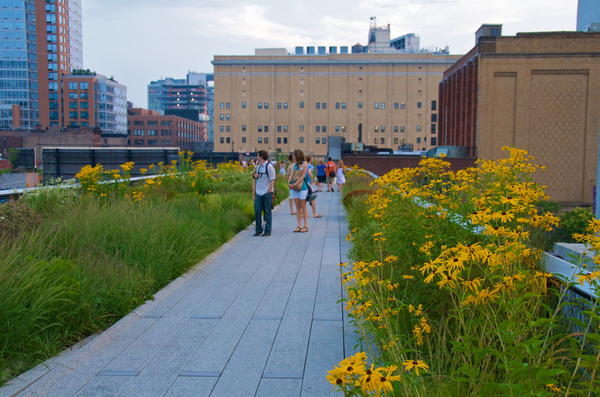 high-line-New-York.jpg