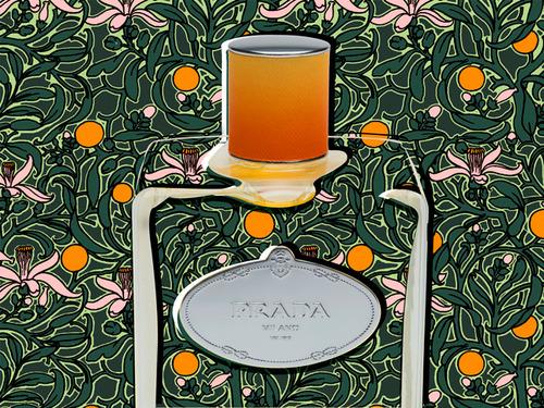 prada-infusion-fleurs-doranger-dorsay.jpg