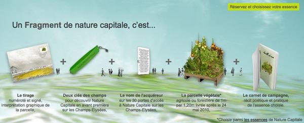nature-capitale.jpg
