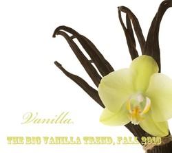 The Big Vanilla Trend in Fine Fragrance, Fall 2010 {Trend Alert & Report}
