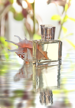 A New French School of Perfumery Will Open its Doors in Paris in 2011 {Fragrance News}