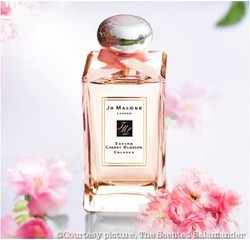 Jo Malone Sakura Cherry Blossom (2011) {New Fragrance - Limited Edition}