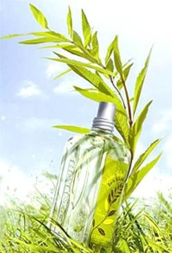 L'Occitane Verveine Soleil - Verbena Sun (2011) {New Fragrance}