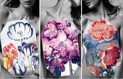 Stella McCartney Stella The Print Collection (2011) {Fragrance News - New Flacon} {Fashion Notes}