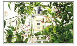 Lovely New Perfume Visual from Jo Malone {Perfume Images & Ads}