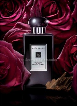 9 Questions to Perfumer Fabrice Pellegrin: Around the Launch of Jo Malone Velvet Rose & Oud {Perfume Q & A} {Rose Notebook}