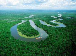 Chamma da Amazônia L'Amazonie Eau de Parfum Features New Extract of Rosewood Leaf (2012) {New Perfume}
