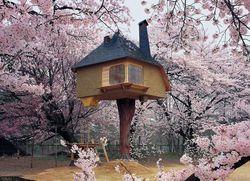Teahouse Tetsu by Terunobu Fujimori & Nobumichi Oshima {Fragrant Images & Ads}