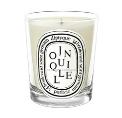 Diptyque Jonquille (2013): To Celebrate Young Spring {New Home Fragrance}