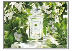 Jo Malone Osmanthus Blossom (2013): Reawakening the Naturals vs. Synthetics Debate, with a Twist {Perfume Review}