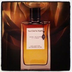 Van Cleef & Arpels Rose Velours (2013): 12 Hours in the Life of a Rose {New Perfume}