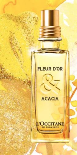 L'Occitane Fleur d'Or & Acacia and Cèdre & Oranger: A Her & Him Duo for Christmas (2013) {New Fragrances}