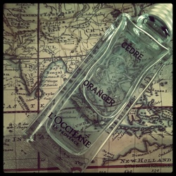 L'Occitane La Collection de Grasse Cèdre et Oranger (2013) {Perfume Review & Musings} {Men's Cologne}