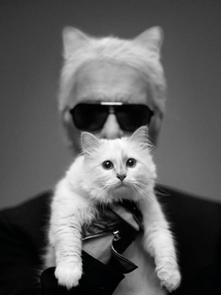 Karl Lagerfeld to Launch Duo of Perfumes in 2014 {Fragrance News}