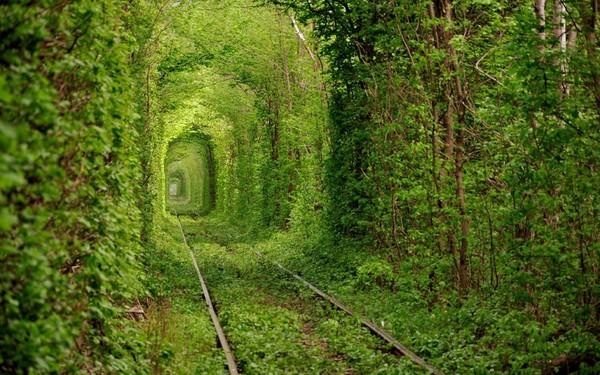 nature_love_tunnels_ukraine_1280x800_28686.jpg