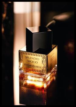 Yves Saint Laurent Splendid Wood (2014) {New Fragrance}