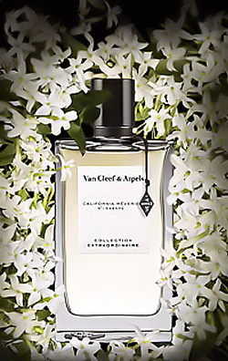 Van Cleef & Arpels California Rêverie (2014) {New Perfume}