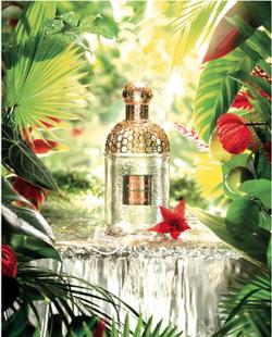 Guerlain Aqua Allegoria Limon Verde (2014) {Perfume Review & Musings}
