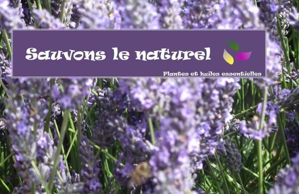 lavande_sauvons_le_naturel.jpg