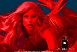 Lady Gaga Eau de Gaga (2014) {Perfume Review & Musings} {Celebrity Fragrance}
