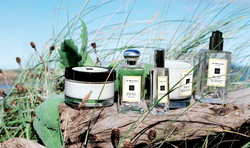 Jo Malone Wood Sage & Sea Salt (2014) {Perfume Review & Musings}