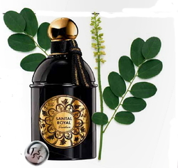 Guerlain Santal Royal (2014) {New Fragrance}