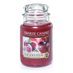 Yankee Candle Luscious Plum (2014) {New Scented Candle}