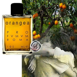 Profumum Roma Orangea (2015) {New Fragrance}