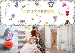Gellé Frères Parfumeurs Est. 1826 to Start a New Life in the 21st Century {Fragrance News} {Scented Paths & Fragrant Addresses}
