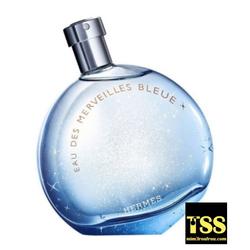 Hermès Eau des Merveilles Bleue: Tasting the Sea (2017) {New Perfume}