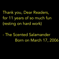 The Scented Salamander's 11th Anniversary Mark & Happy Saint Patrick's Day!