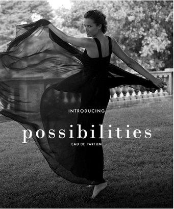 Possibilities Ann Taylor Ad.jpg