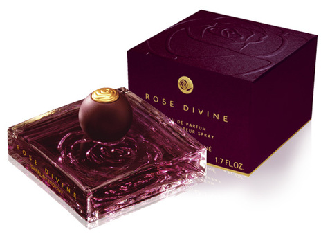 Rose-Divine-Derroisne.jpg