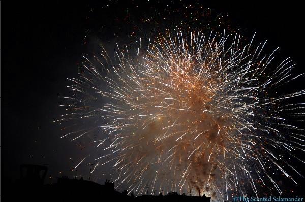 14-Juillet-2010-5-D.JPG