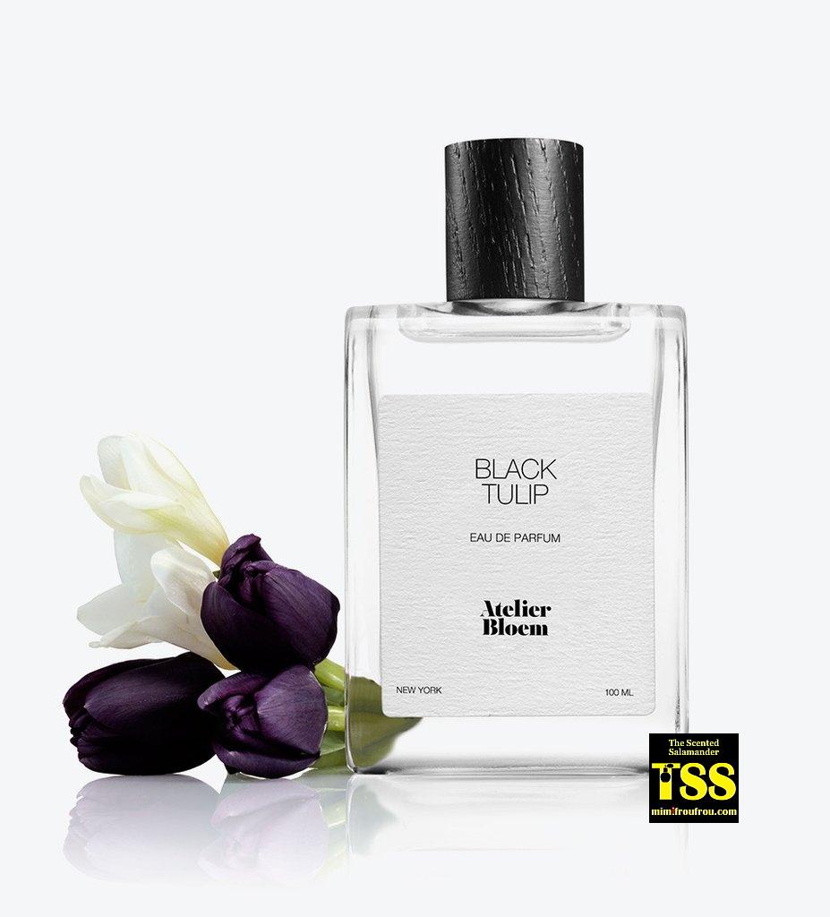 Atelier-Bloem-Black-Tulip.jpg