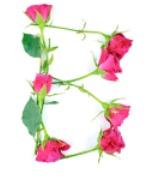 B-Letter-Rose-TSS.jpg