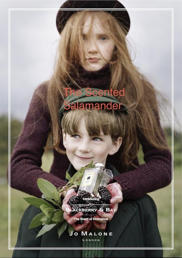 Blackberry & Bay_2.jpg
