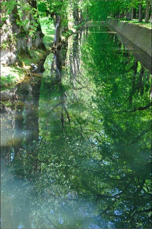 Chenonceau-verdure-B.jpg