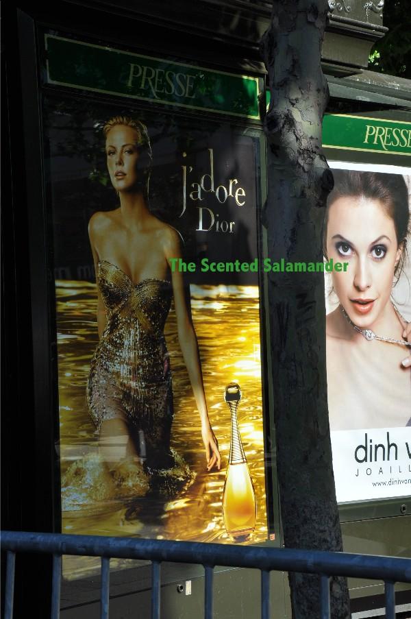 Dior-Jadore-2010-Charlize-Ad.JPG