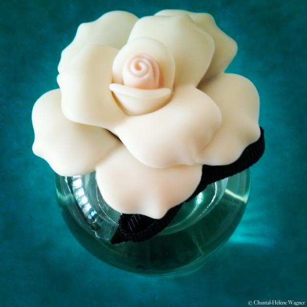 Dolce_perfume_Gabbana.jpg
