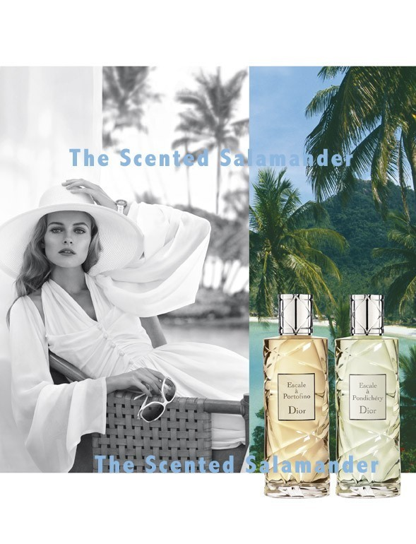 christian dior escale a pondichery 2009 hedonistic cologne perfume review the scented. Black Bedroom Furniture Sets. Home Design Ideas