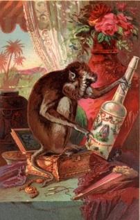 Florida-Water-Monkey.jpg